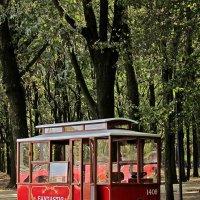 """трамвай """"Желание"""" :: Александр Корчемный"""