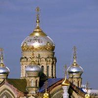 Вид на Церковь подворья Оптиной пустыни :: Владимир Гилясев