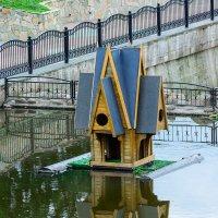 Плавучий домик для птиц на Витьбе. 02. :: Анатолий Клепешнёв
