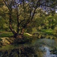 В старом парке... :: Валентин Яруллин
