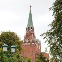 Воскресный день в Александровском саду :: Елена Миронова