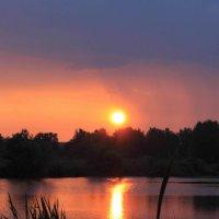 утро дорога к солнцу :: Сергей