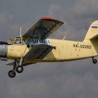 RA-02262 :: Андрей Иркутский