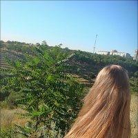Летний ветерок :: Нина Корешкова