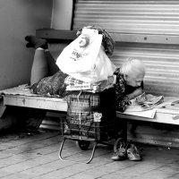 Константин Рыбалко - В ожидании :: Фотоконкурс Epson