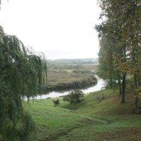 Пушкинские горы, Тригорское. Река Сороть :: Елена Павлова (Смолова)