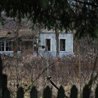 Пионерский лагерь :: Сергей Cel