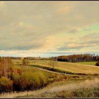 Derevenskij peizazj. Latvija :: Daiga Megne