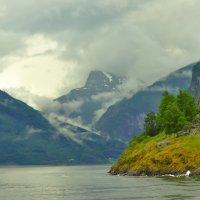 Норвегия. Согнифьёрд2 :: Алексей Кошелев