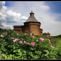 Башня... :: Nikanor