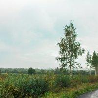 Вот и осень :: Ярослав Афанасьев