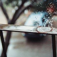 Дождь :: Лора Плотникова