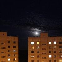 Ночной город :: Мария Барановская