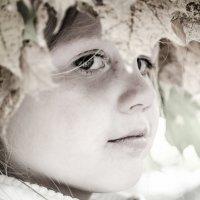 Осень :: Екатерина Александровна