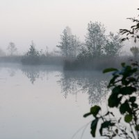 Утренний туман :: Злата Красовская