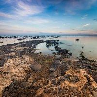 Рыбинское водохранилище :: Артем