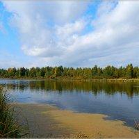 осеннее озеро :: Сергей Швечков