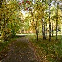 парк :: Светлана