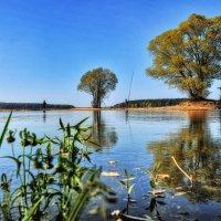 Рыбаки :: Андрей Куприянов