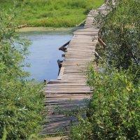мостик через Хреновский затон :: alecs tyalin