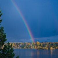 После дождя :: Роман Кондрашин
