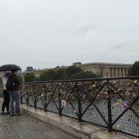 Свадебный мост на Сене :: Svetlana27