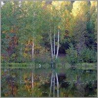 Вечер на озере :: Николай Дементьев