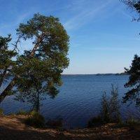 Шепелевское озеро :: Валентина Папилова