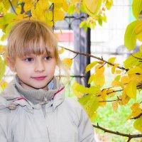 просто осень :: Елена Баландина