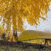 Сон в золотую осень... :: Bosanat