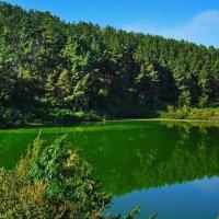 ,,Зеленое,, озеро. :: Владимир Михайлович Дадочкин