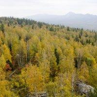 Золотая осень на Таганае :: Анна Ермак