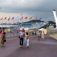 В Олимпийском парке :: Владимир Болдырев