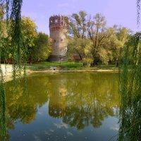 Башня Новодевичьего монастыря :: Igor Khmelev