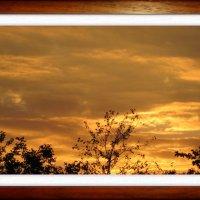 Картина с закатом... :: Тамара (st.tamara)