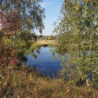 Подмосковный пейзаж :: marmorozov Морозова
