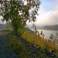Осенние туманы. :: Николай Елисеев