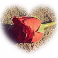 Эмблема любви....... :: Tatiana Markova