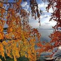 Осень. О.Тургояк :: Сергей Федосеев