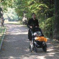 Прогулка по парку :: Наталья Александрова
