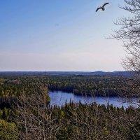 Большой Соловецкий остров. Вид с Секирной горы :: Владимир Воробьев