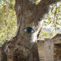 Грустный глаз :: наталья давыдова