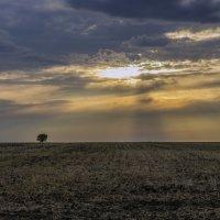Один в поле 2 :: Юрий Клишин