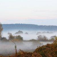туман :: Екатерина Александровна