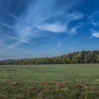 Осенний воздух чист и свеж :: Михаил (Skipper A.M.)