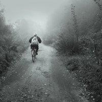 Сквозь осенний туман :: Николай Белавин