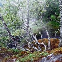 Взвесь мелких брызг мощного водопада :: Светлана Игнатьева
