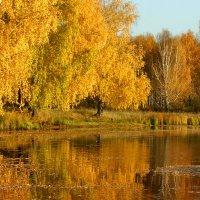И ярких красок нежное слиянье :: Нэля Лысенко
