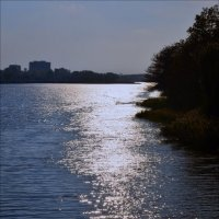 Река Харьков :: Tatiana Kretova