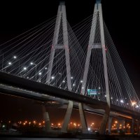 Вантовый мост :: Евгений Киреев